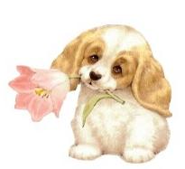 chien fleur